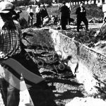 Do společného hrobu byli pohřbeni čs. vojáci, kteří padli při povstání proti okupantům, a dále občané, kteří byli zavražděni příslušníky SS 7.5.1945 v Lahovicích (zdroj: ABS)