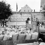Rok 1951: Touškov svoz obilí (Foto zdroj: Národní zemědělské muzeum)