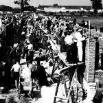 Společná výstavba kravína z počátku 50. let (Foto zdroj: Národní zemědělské muzeum)