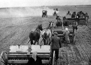 Ilustrační foto, Zdroj: Národní zemědelské muzeum