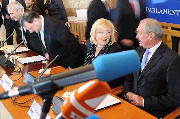 捷克参议院听证会 呼吁中共停止迫害法轮功