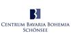 CeBB-Logo für bbkult